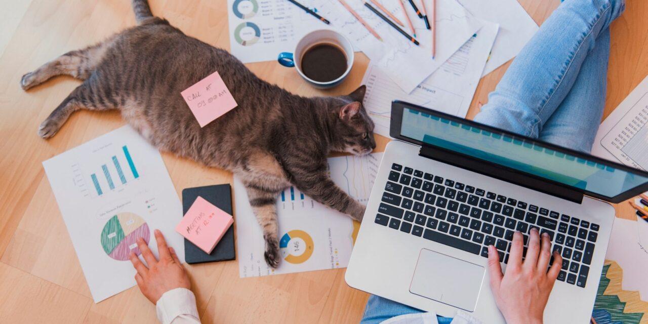 Smart working: la gestione delle attività in remoto.