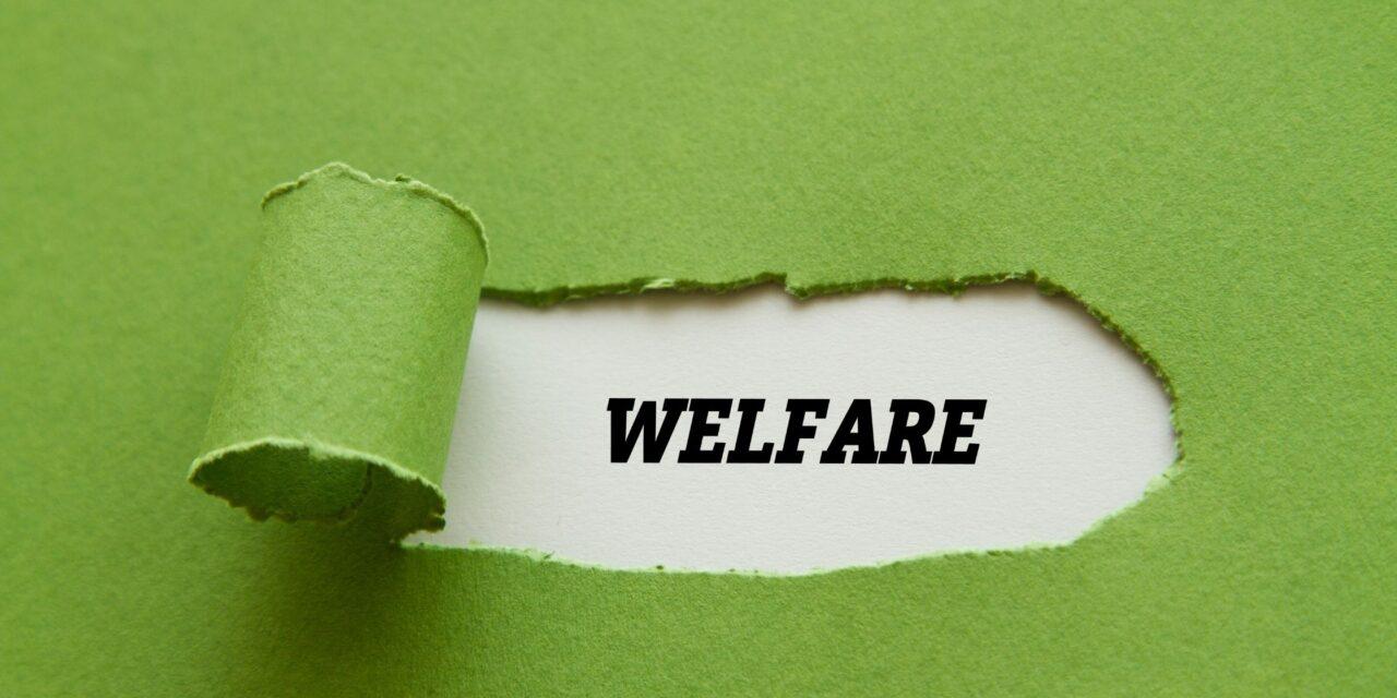 Aziende post covid: come cambia il welfare
